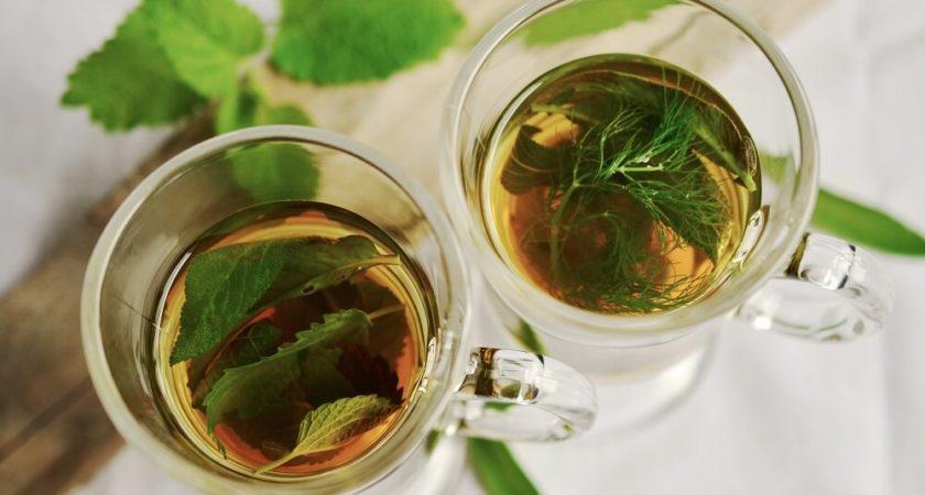 Zielona kawa – pobudza i wspomaga odchudzanie