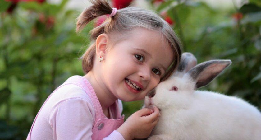Jak wzmocnić odporność u swojego dziecka?